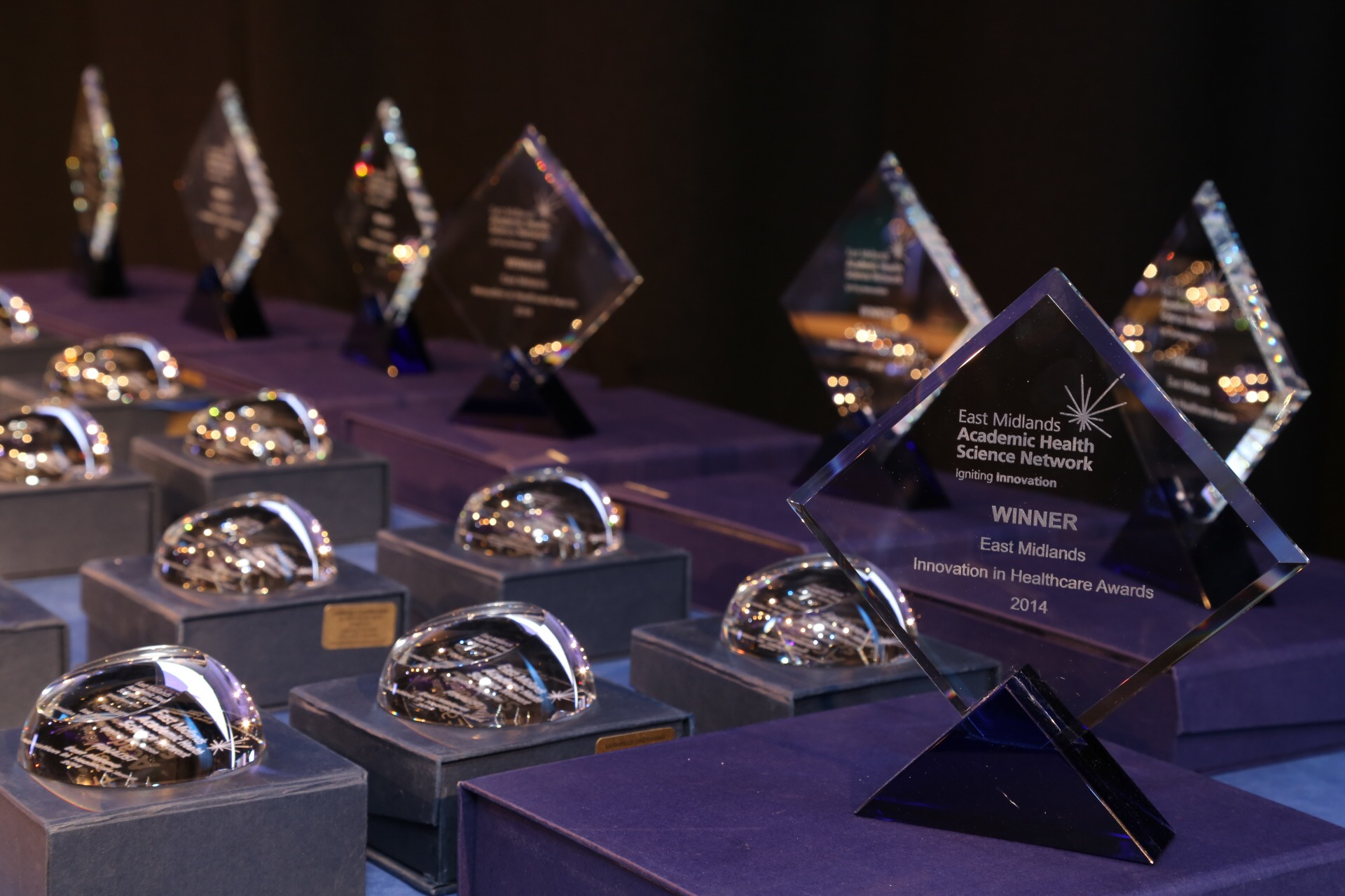 Trophies from EMAHSN Innovation in Health Awards